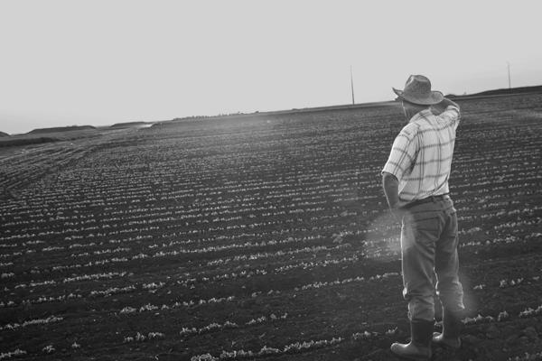 Assurances industrie agricole